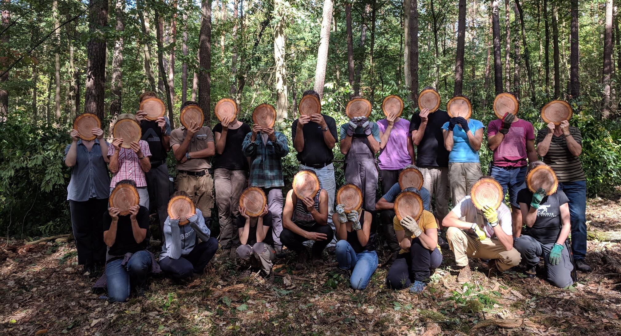 Traubenkirschenbaumscheiben vor dem Gesicht