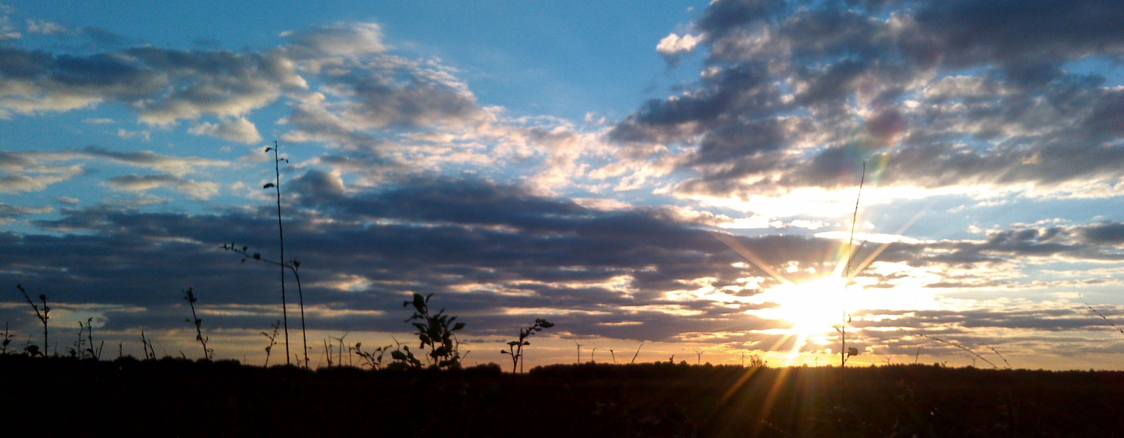 Moorniederung bei Sonnenuntergang