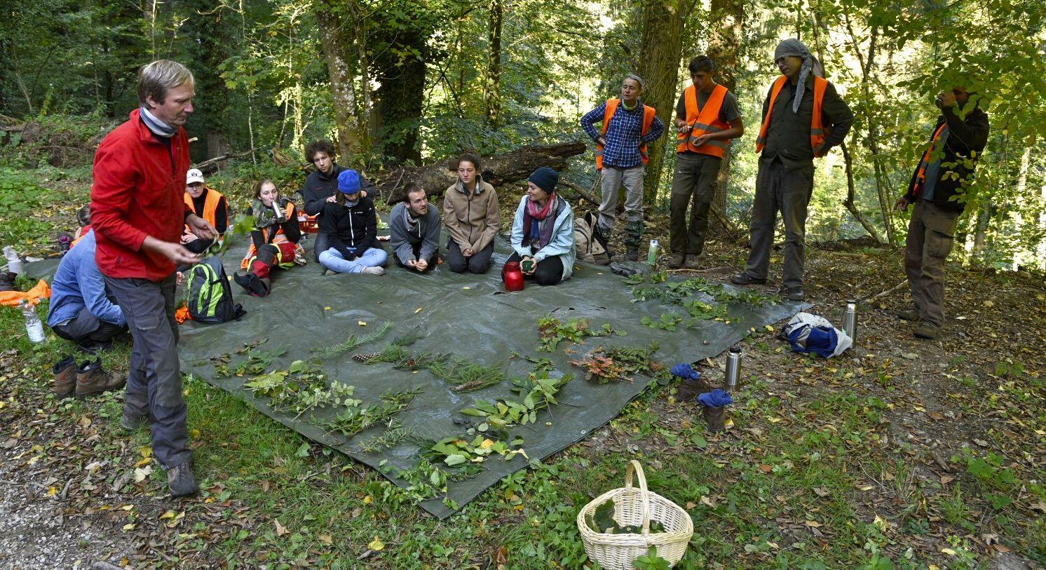 57 Baum- und Straucharten wurden gefunden