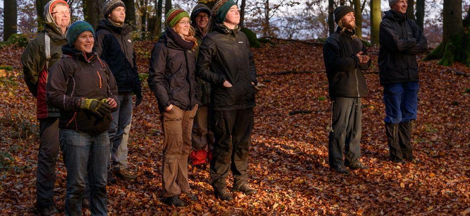 Novembersonnetankende Freiwillige im Pfälzer Wald