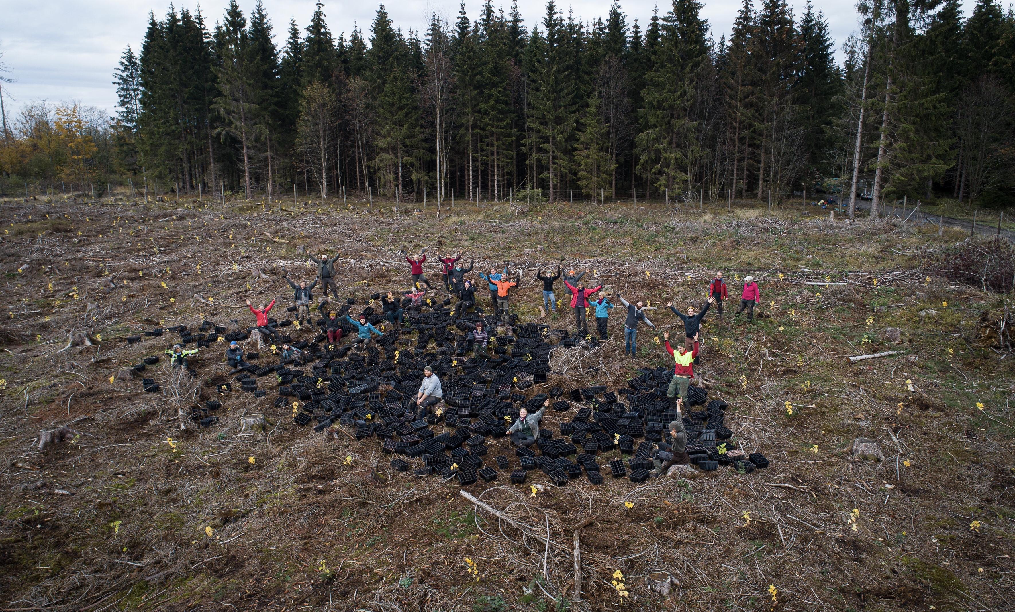 Pflanztrupp mit schwarzen Containern