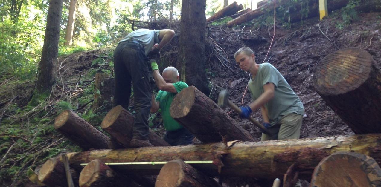Beim Holzkastenbau im Knüll
