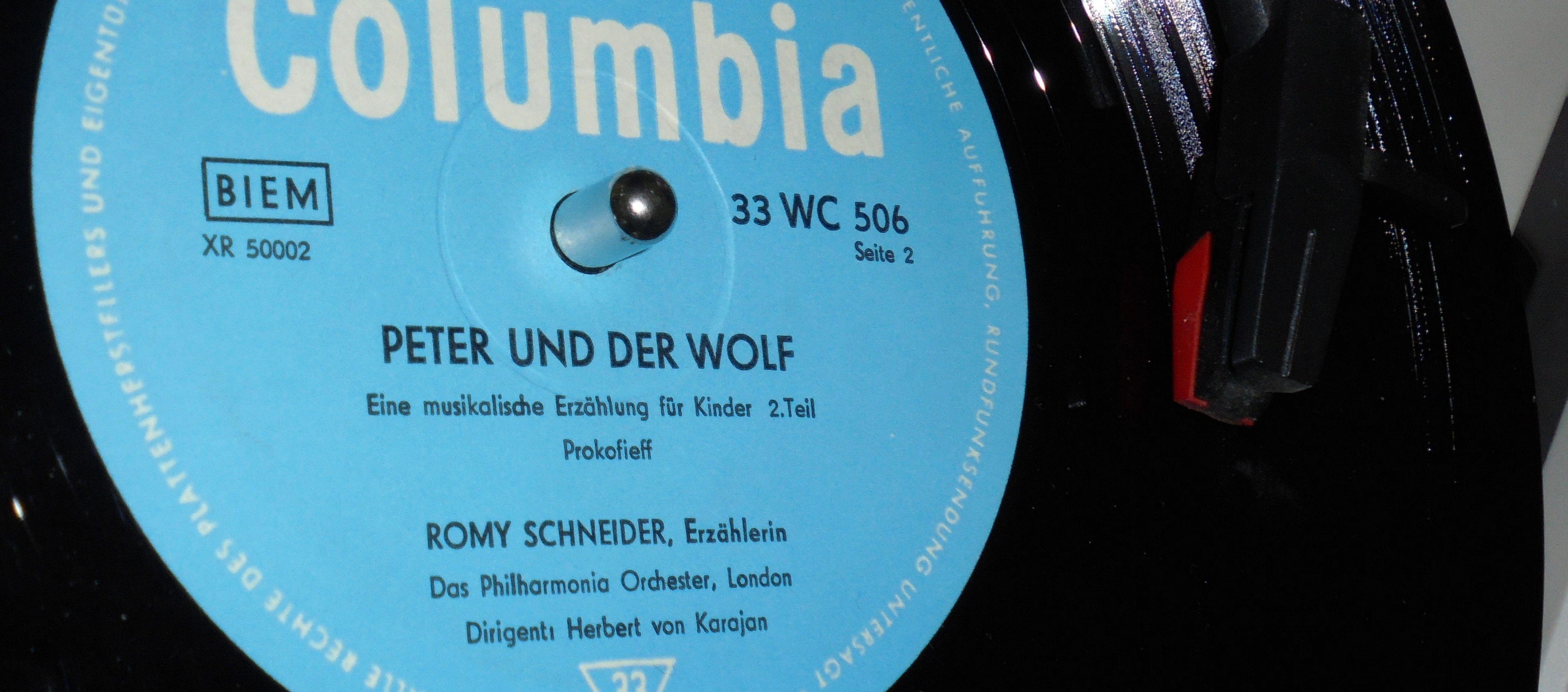 Der Wolf dreht sich im Kreise