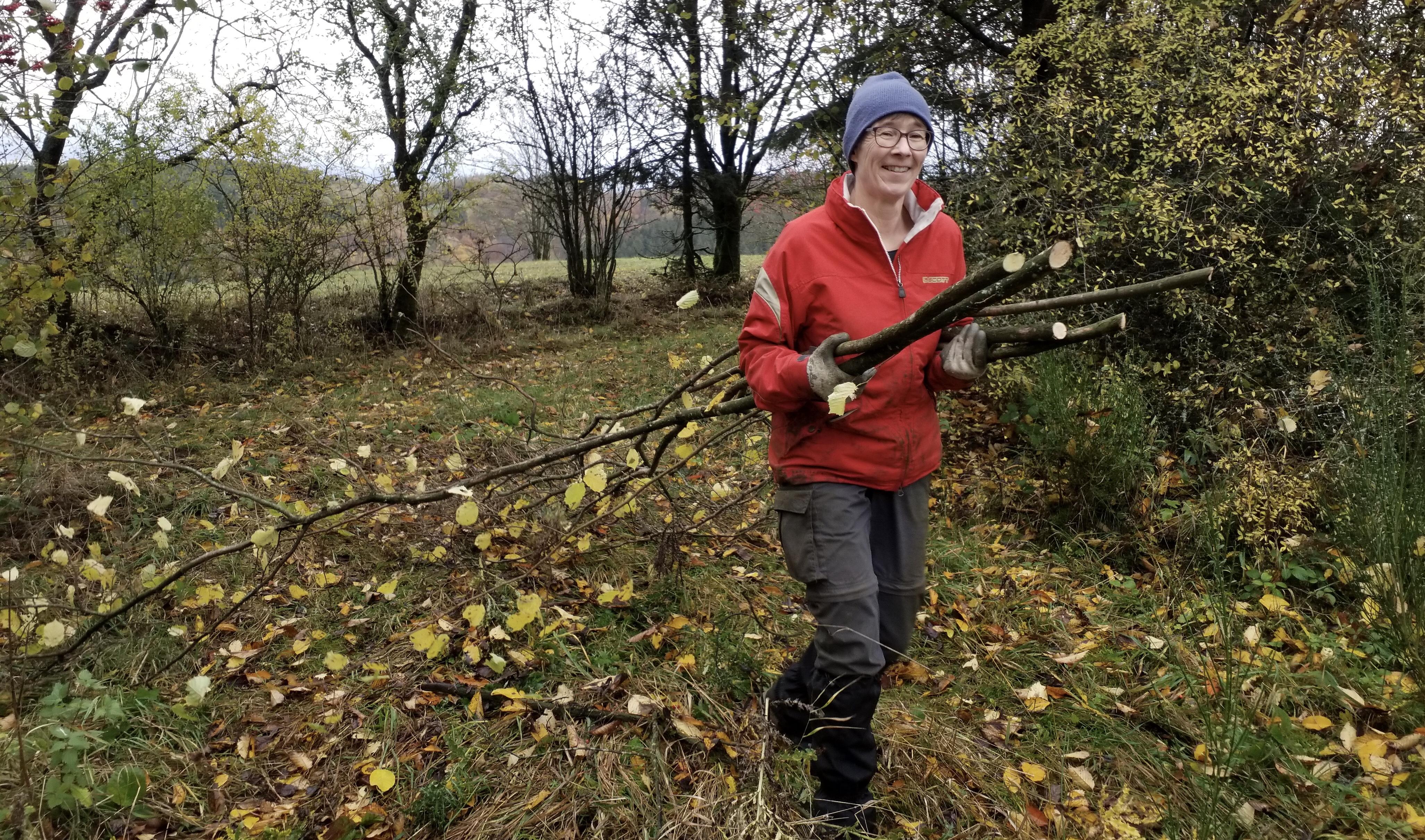 Pingenzugpflege ist Bodendenkmalpflege