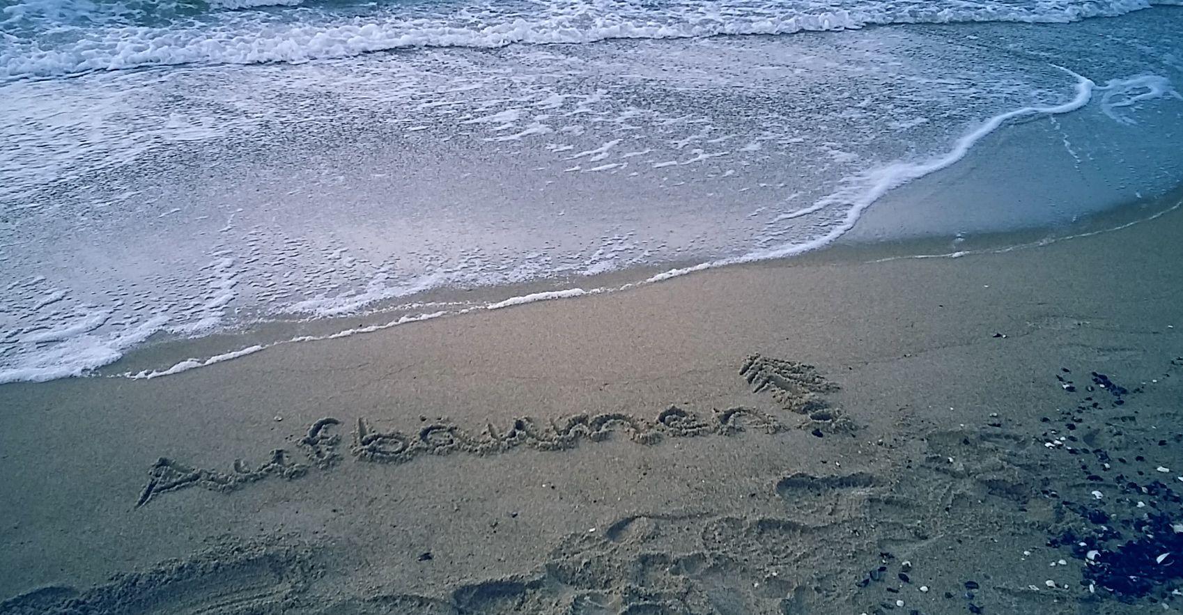 Aufbäumen am Strand