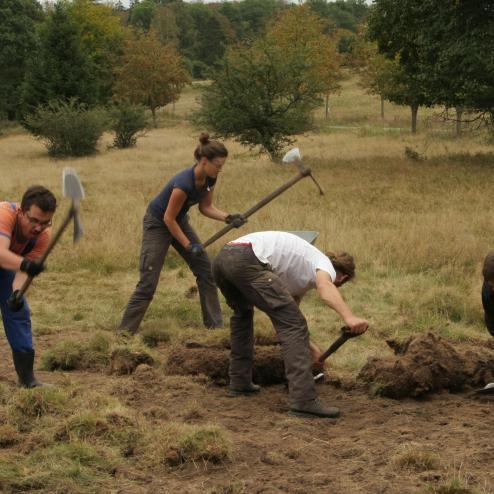 Freiwillige beim Anlegen von Graskreisen.