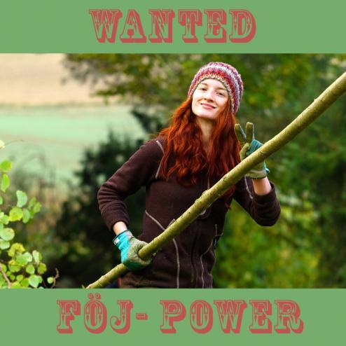 foej_wanted_girl.jpg