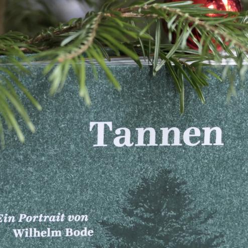 Das Buch zum Tannenbaum
