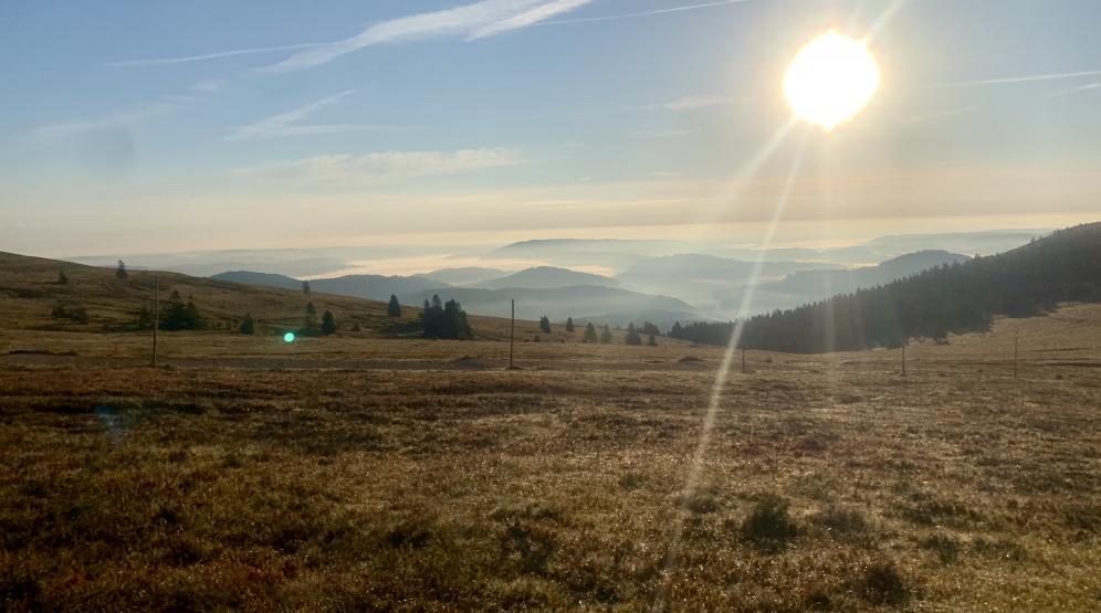 Morgenerwartung am Feldberggipfel