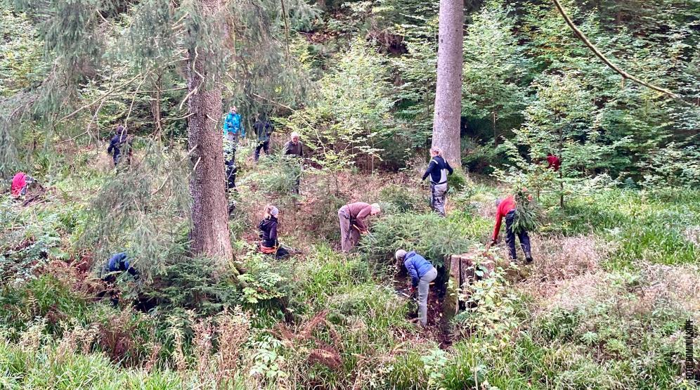 Wimmelbild mit Freiwilligen im Bachtal