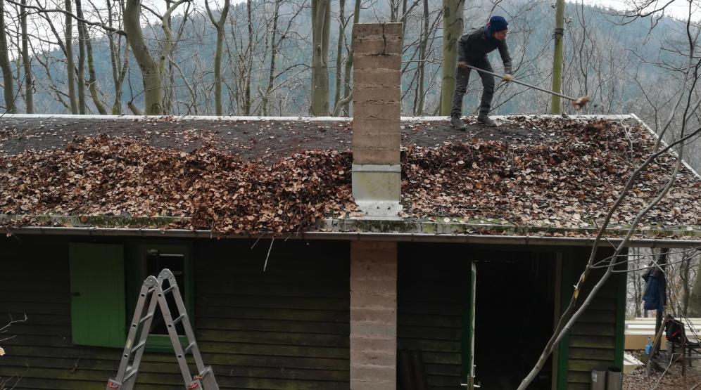 Dachbegrünungsvorbeugung