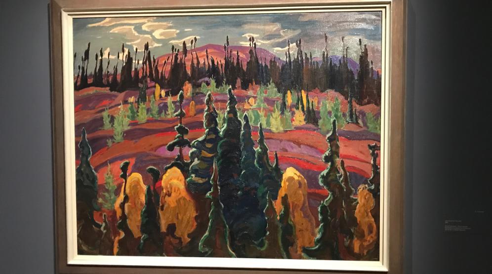 Kanadische Wälder in der Schirn Kunsthalle Frankfurt