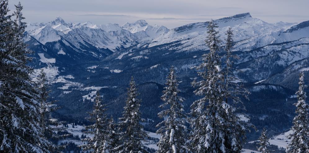bergwelt.jpg